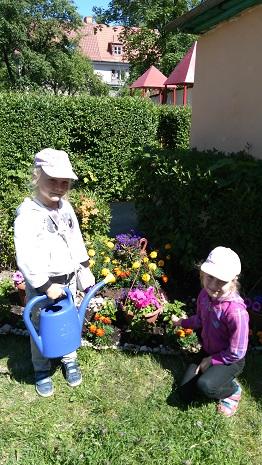 девочки ухаживают за цветами на клумбе