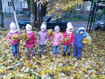 Гуляем по территории детского сада, изучаем деревья и их листочки